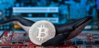 Ballena de bitcoin 20 millones