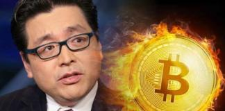 Tom Lee- Bitcoin