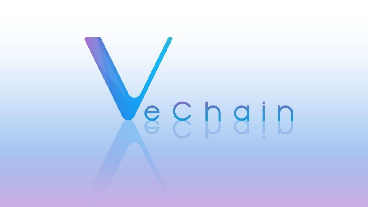 VeChain Foundation inicia la votación para la actualización de red propuesta